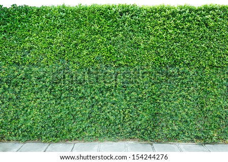 decorative garden on a brick fence and floor isolated on white background - stock photo
