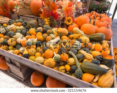 Decorative gourds and squash at farmers market