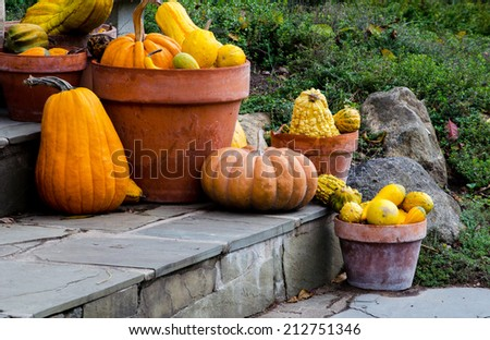 Decorative gourds, pumpkins and fall leaves, are displayed on slate steps, and clay pots - stock photo