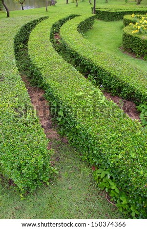 Decorative green park.(part  5) - stock photo