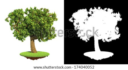 Decorative Lush Green Tree on Green Grass  Isolated on White Background with Detail Raster Mask. - stock photo