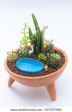 Decorative miniature garden in Potted with cactuses and succulents. - stock photo