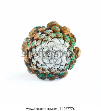 Decorative object - new year wood pine fir cone