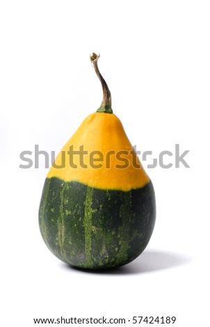 decorative pumpkin - stock photo