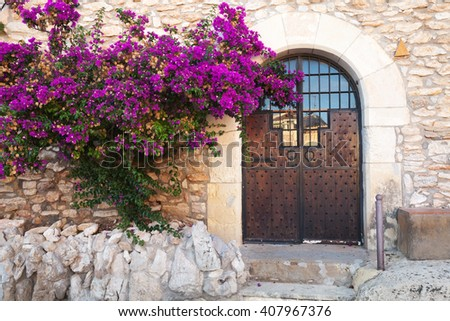 Decorative purple Bougainvillea bush growing near old stone wall with closed wooden door - stock photo