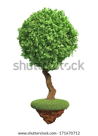 Decorative Tree with Spherical Krone on Grass Island Isolated on White Background. - stock photo