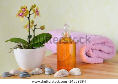 Decorative wellness set with orchid, massage oil, towel and shells - stock photo