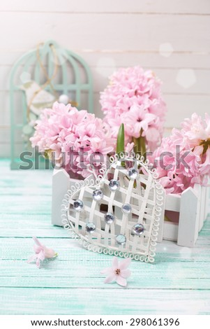 Decorative white heart and pink hyacinths  in box  in ray of light on  turquoise wooden background. Selective focus is on heart.