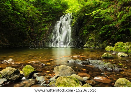 Deep Forest Waterfall. - stock photo