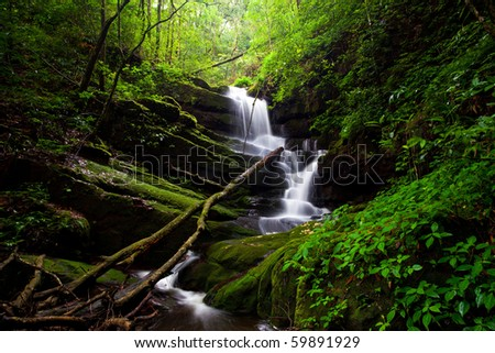 Deep forest Waterfall - stock photo