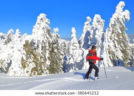 Deep snow on the mountain and woman ascending on touring skis  - stock photo