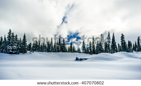 Deep snow pack and snow covered trees at the village of Sun Peaks in the Shuswap Highlands of British Columbia, Canada - stock photo