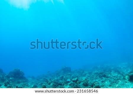 Deep underwater, Palawan. - stock photo