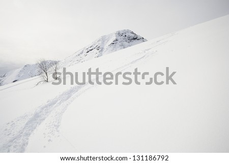 Deep zigzag shaped ski track on off piste candid slope covered by powder snow in a cloudy day - stock photo