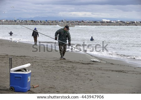 DEEPNETTING FOR KING SALMON IN KENAI PENINSULA, ALASKA - AUGUST 12, 2015 : substantial fishink aka Deepnetting in Alaska - stock photo