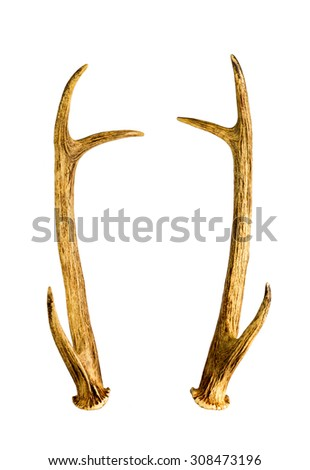 nude pics with antlers