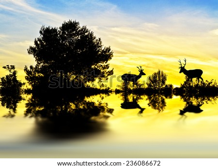 Deer in the weeds of the lakeside - stock photo