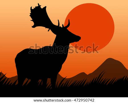 Deer in wild with sundown