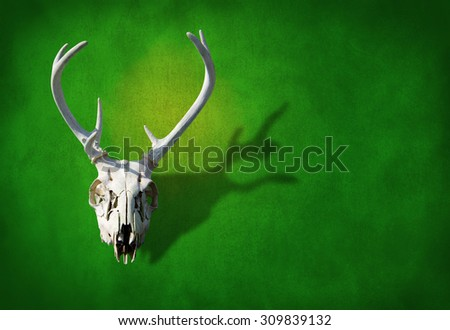 Deer skull on a earthy green background representing hunting, animals, nature, wildlife, nature preservation and more. - stock photo