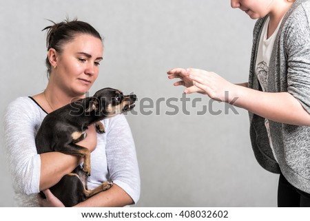 Defending pinscher dog - stock photo