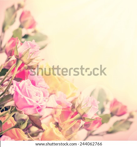 Defocus blur Pastel flowers - roses on tender background with color filters - stock photo