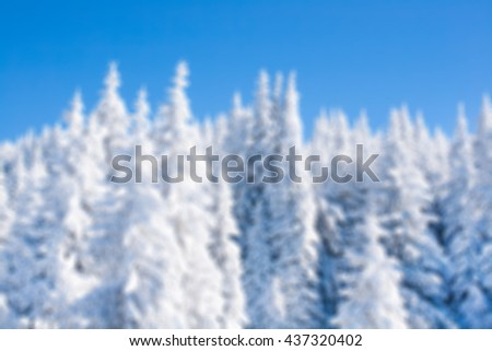 Defocused blur winter vacation background with pine trees covered by heavy snow against blue sky with copy space
