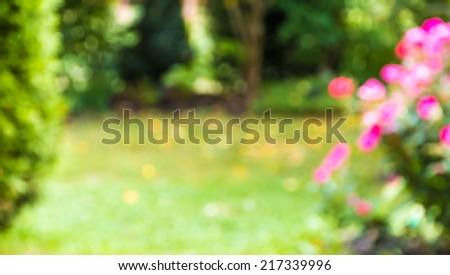 Defocused garden, blurred natural summer background - stock photo