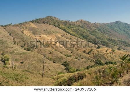 Deforestation at Northeast of Thailand  - stock photo