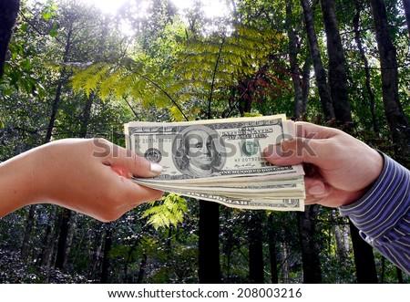 deforestation , benefits , selfishness , Selfish capitalists , wild Sales - stock photo