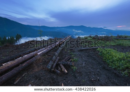 Deforestation in Carpathian Mountains, Ukraine - stock photo
