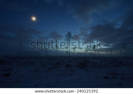 Deforested area in the night, crescent in the sky - stock photo