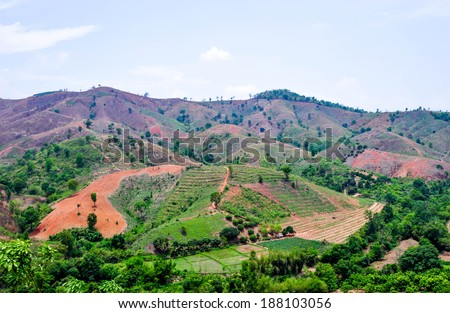 Deforested mountain - stock photo