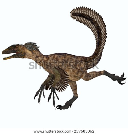 Deinonychus over White - Deinonychus was a carnivorous dinosaur that lived in the Cretaceous period of North America. - stock photo