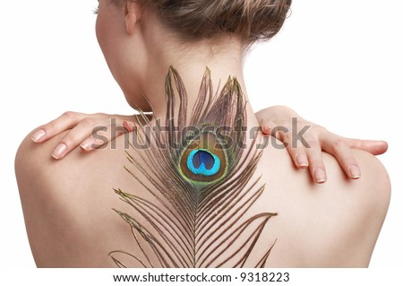 delicate skin, the back of a woman and peacock feather, light skin - stock photo