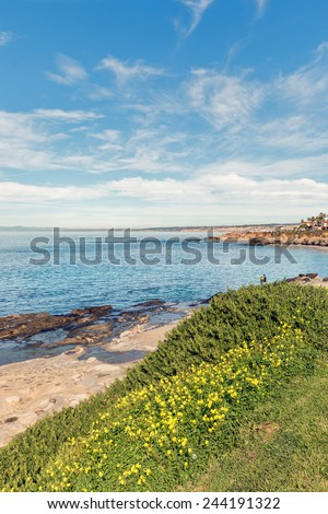 Delicate yellow wildflowers growing on cliff top contrast with rugged rocky shoreline. Life, growth, love or romance concept. People, blue sky and clouds background. Wide angle scenic view.  - stock photo