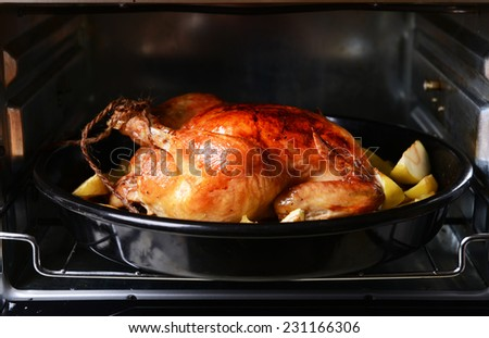 Delicious baked chicken in oven close-up - stock photo