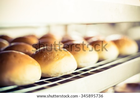 Delicious buns with crust on blurred bakery indoor background. - stock photo