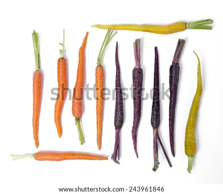 Delicious carrot on a white background - stock photo