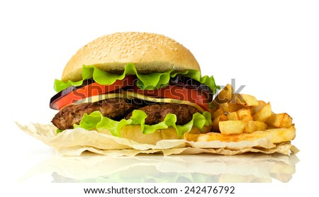 delicious cheeseburger with french fries isolated on white - stock photo