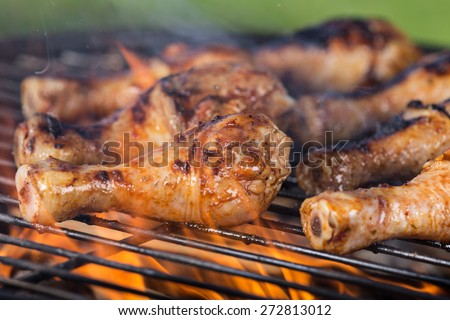 Delicious chicken legs on garden grill, close-up