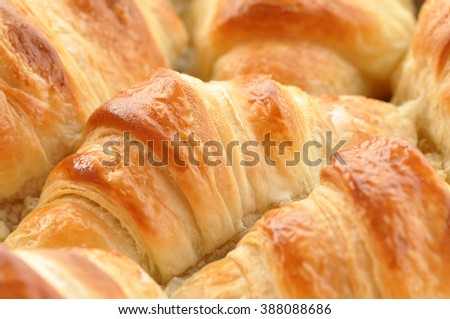 Delicious croissants - stock photo