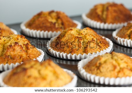 Delicious fresh homemade banana muffins in a baking tray - stock photo