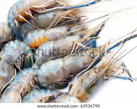 Delicious fresh shrimp seafood isolated in white - stock photo