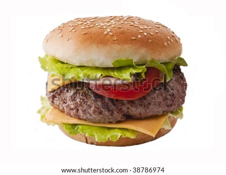 Delicious hamburger with onion lettuce and tomato - stock photo