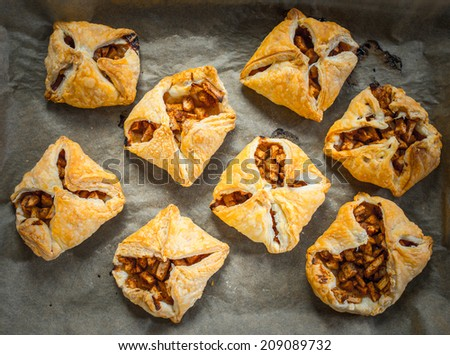 Delicious homemade apple strudel on wooden background - stock photo
