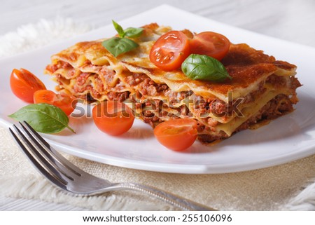 Delicious hot lasagna with basil and tomatoes  on a white plate. Horizontal