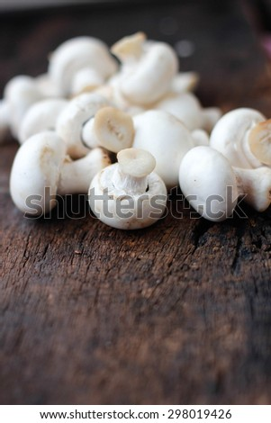 Delicious raw white edible button mushrooms ready to cook in kitchen. - stock photo