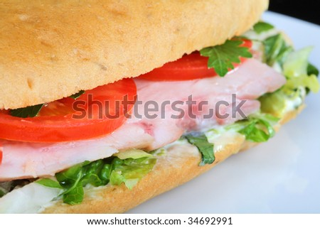 Delicious sandwich with tomatoes and chicken breast - stock photo