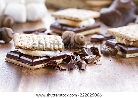 Delicious Smores with chocolate and marshmallows. Extreme shallow depth of field.