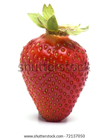 Delicious Strawberry in Summer - stock photo